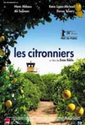 Les_citronniers_tmpok1_2